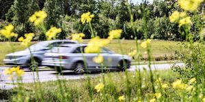 """""""Kom ihåg att förra året ökade dödsolyckorna trots att det redan finns en massa 80-vägar som är alldeles för bra för den hastigheten"""". Foto: Tomas Oneborg/SvD/TT"""