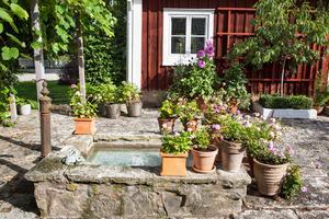 Närkingsk kalksten, en gammal brunn och ett skyddat läge bildar stommen till det som Stina kallar Lilla Toscana.