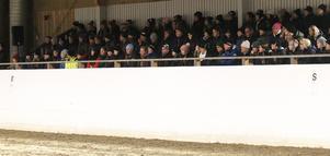 En del av den fullsatta huvudläktaren hos Åsbygdens Ridklubb, som arrangerade seminariet ihop med Brunflo RS.