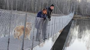 Elisabeth Nilsson och Mats Moberg på en av hängbroarna i deltat där vandringen längs kusten i Timrå ska gå.
