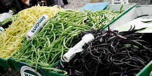 På Bondens egen marknad säljer självproducerande lantbrukare närodlade grönsaker och andra livsmedelsvaror. Foto: Krister Larsson/TT
