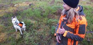 Zack vill smaka korv av Stella efter ett pass i skogen. Foto: Patrik Eriksson.