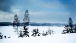 Om ett par år kommer horisonten över byn Tönsen att se annorlunda ut.