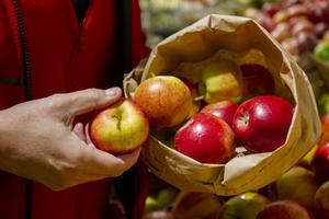 Kommunen och Eva B Nilsson vann priset Årets cirkulära initiativ, för ett projekt med papperspåsar för matavfall i mataffärernas fruktdiskar. Privatpersonen som kläckte idén nämns inte ens vid namn, menar insändaren.