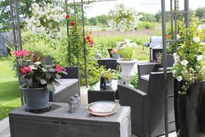Trädgården har fyra möbelgrupper.
