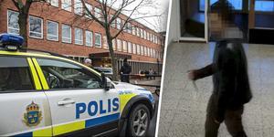 Beväpnad med kniv försökte mannen i 20-årsåldern ta sig in på Torsbergsgymnasiet i Bollnäs. Nu väntar rättspsykiatrisk vård för mannen, som lider av en allvarlig psykisk störning.