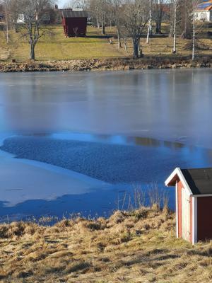 En vak har varit öppen nästan hela vintern, skriver Ola Granath.