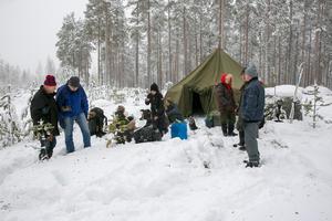 Många har engagerat sig för att rädda skogen.