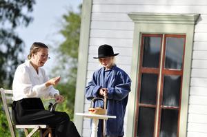 Emil tänker att det är en bra idé att tjäna ihop egna pengar till flugfångare i Katthult. Han lurar därför prostinnan (Julia Boivie) att han är ett fattigt barn utan mat och pengar som bara fått flugor till middag. Prostinnan blir förskräckt och tar genast fram en hel tvåkrona till Emil. Den köper han sedan en låda flugfångare för, något som inte blir så uppskattat som han tänkt sig.