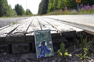 """""""Min syster och jag pekade med fingret på järnvägen. Och sa att på det där spåret kom tåget. Där borta ur svängen. Dök upp som huvudet på en larv och drog svansen efter sig."""" Ur """"Märit"""" av Ing-Marie Eriksson."""