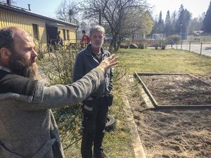 Odlingsrådgivaren Johan Nilsson förklarar hur man kan odla olika växter olika år för att minska risken för sjukdomar. Arbetshandledaren Björn Holmér hoppas på en ännu större skördefest detta år.