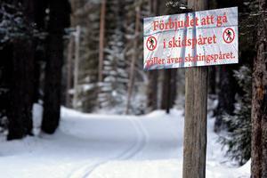 ... liksom en tur på skidor eller skridskor på någon av de isbanor som finns uppspolade.