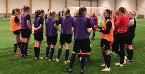 Gideälven under en träning i hallen i Örnsköldsvik. Division 3-laget jagar tränare.                                                   Bild: Privat