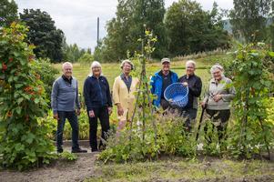 Thorleif Widmark, Kerstin Thelberg, Margareta Nordström, Kent Thelberg, Tommy Strömqvist och Kristina Persson skulle gärna fortsätta att vårda trädgården. Daniel och Christina Lindahl och A-C Persson tillhör gänget men saknas på bilden.