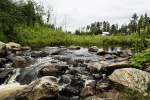 Vid sidan av dammen har vattnet hittat en väg ut ur sjön.
