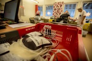 Att ge blod kan vara den bästa julklappen av alla.