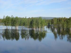 Översvämningar är ingen ovanlig syn i Sorsele.