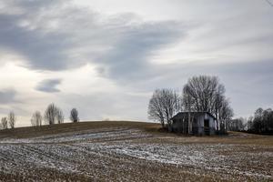 Bostadsförsörjning ska komma före jordbruksmark i den nya översiktsplanen.