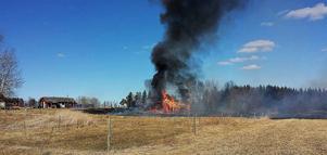 Sju brandmän bekämpade elden i Ås som spridit sig över en stor gräsyta och även till en byggnad som stod i full brand.