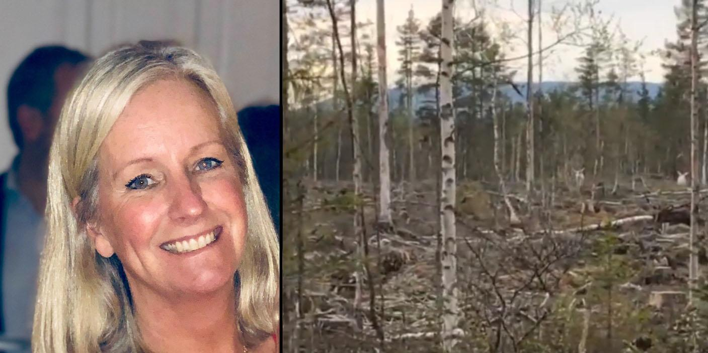 """Ulrika träffade två vita älgar i Rätan: """"Det var fantastiskt"""""""