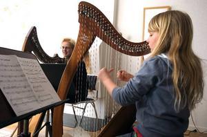 Dyrt instrument. Harpan som elvaåriga Sara Forssman spelar på kostar uppåt 20 000 kronor. Ändå är det småpotatis jämfört med en fullstor skolharpa som kostar minst 150 000 kronor. Så det kan bli problem för musikskolan när eleverna blir äldre och mer krävande, siar läraren Clara Heineman.