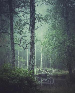 Foto: Carina Eklund