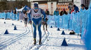 Han föll i sprintfinalen på lördagen, men i fredagens distanslopp var Nils Bergström bäste svensk bakom en finländare, två norrmän och en amerikan.