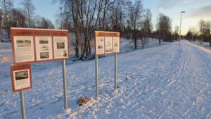 """Stanna vid de fem """"sågverkstavlorna"""" och läs medan ni stretchar, föreslår Ann Fredbäck. Foto: Privat"""