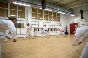 – Vår förening är en av få där kvinnor, män och unga vuxna tränar tillsammans, berättar Jaana Pulkkis som har svart bälte i karate.
