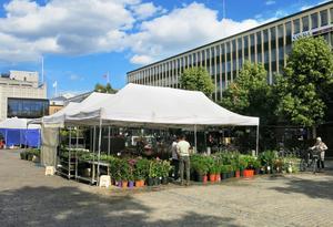 En idé som diskuteras är att flytta torghandeln till Bondtorget. Träden och buskarna framför Sigmahuset tas bort.