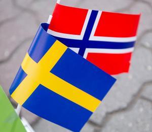 Norge har en levande landsbygd. Varför skulle inte Sverige också kunna ha det, undrar Dag Björkenbo och anar vad orsaken kan vara?