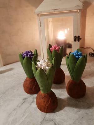 Naturtrogna hyacinter blir vackra juldekorationer. Foto:Privat