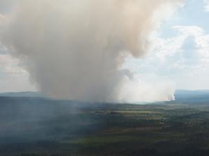 Det brinner i skogarna på många håll i landet – främst i Dalarnas, Gävleborgs och Jämtlands län.