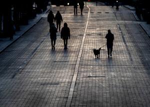 Vi skulle aldrig komma på tanken att ha hundfria städer där hundrädda människor kan bo.  Foto: TT