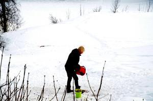 Anita Kristiansson bär ut 15 kilo pellets till rådjuren om dagen.