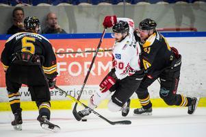 Marcus Eriksson har varit en av hockeyallsvenskans bästa spelare under lång tid. Foto: Christian Örnberg / Bildbyrån