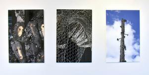 Fotografier från branden på Näringen, i vilken Seywan Saedian miste sin ateljé.