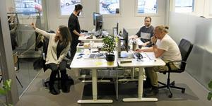 Maria, Mattis, Inge och Niklas hos Dwise, ett företag som varit med från starten.