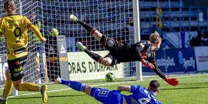 William Eskelinen fick se tre bollar passera honom i målet när Elfsborg vann med 3–1. Bild: Adam Ihse/TT