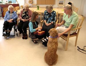 Många boende blir nostalgiska när de får träffa och leka med djur, som här med hunden Adiba på Skärvstagården.