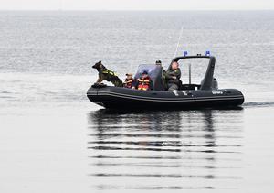 De danska poliserna har varit imponerande, hur de jobbar och inte ger upp. Alla dykare som lagt ned tusentals dyktimmar. Att de var metodiska och professionella mitt i all press och stress, dessutom tagit in kompetens som de nyttjat på vettigt sätt – det var imponerande, säger Hans Norberg.