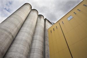Silon påminner om alla bönder som jobbar för att vi ska ha mat på bordet, anser insändarskribenten. Foto: Kenneth Hudd/arkiv