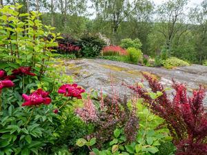 En bild som talar för sig själv. Underbar! En liten del av en artrik och välplanerad trädgård hos Carina och Staffan Holmströms i Ravesta.  Foto: Christina Fryle