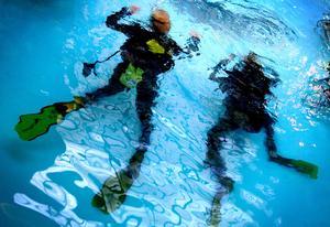 Innan du ger dig ut och dyker måste du ha rätt utbildning och utrustning. Och dyk aldrig ensam. Foto: Jessica Gow/TT