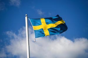 Jag fäller en tår för dig i dag, Sverige, och passar på att tacka min mamma för att hon valde Sverige åt oss, skriver signaturen.