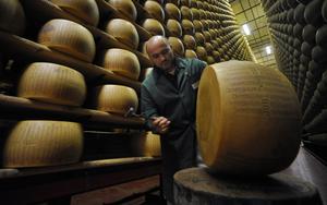Kvalitetsinspektör Fabrizio Giberti  undersöker en parmesanost 2009. En förutsättning för att den ska hålla en jämn och hög kvalitet, konstaterar nöjesredaktör William Holm, som ibland har svårt att hålla sig till ämnet.