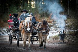 Matilda Björkhand från Valskog höll i tömmarna när hon lotsade barn omkring i häst och vagn. Foto: Lennye Osbeck