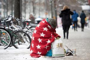 Artikelförfattaren menar att Sverige och svenskarna behöver omvärdera hur vi ser på begreppet jämlikhet. Foto: Maja Suslin/TT