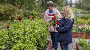 Ulla Karlsson och Marie Delemar från Ludvika kom för de nyskördade grönsakerna men passade på att plocka lite blommor också. De tycker man ska se till att gå i skogen, tända ljus och ta det lugnt på hösten.