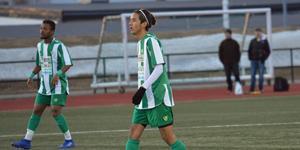 Älgarnas Mostafa Afzali är en viktig spelare i Ångermanland.